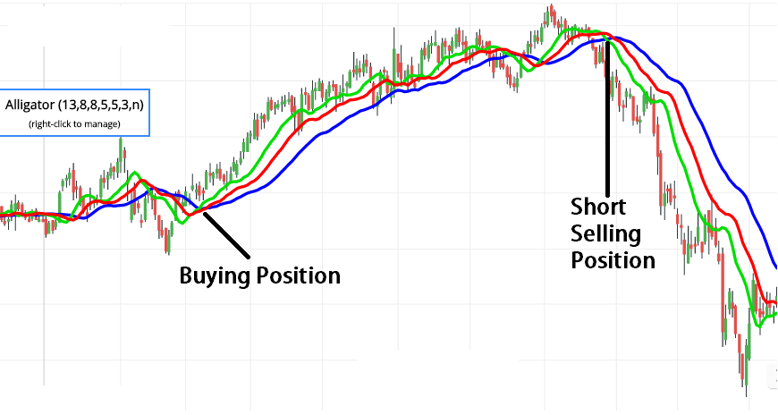 alligator indicator buying strategies